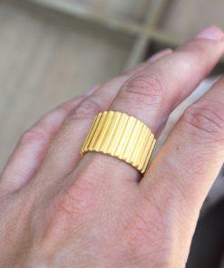 Gold Plated Ring Prigipo Artonomous 3