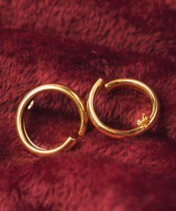 Hoop Earrings Gold Plated 1 Artonomous